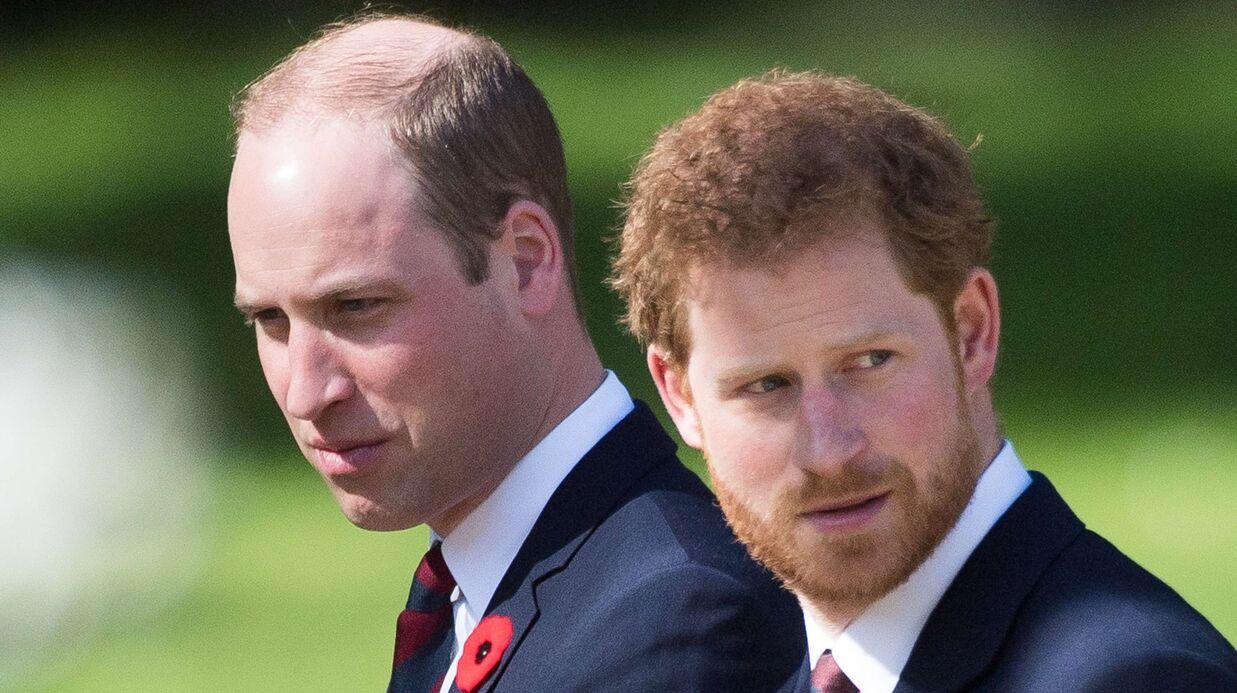 PHOTOS Les princes William et Harry dévoilent des images inédites avec Lady Diana