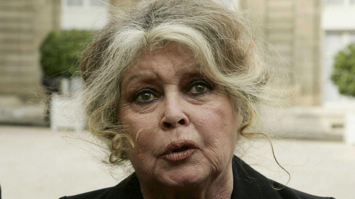 Brigitte Bardot fustige ces