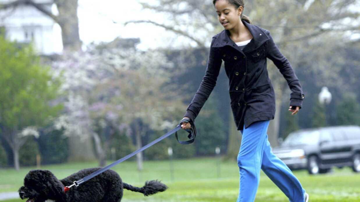 PHOTOS: Première sortie de la famille Obama avec Bo