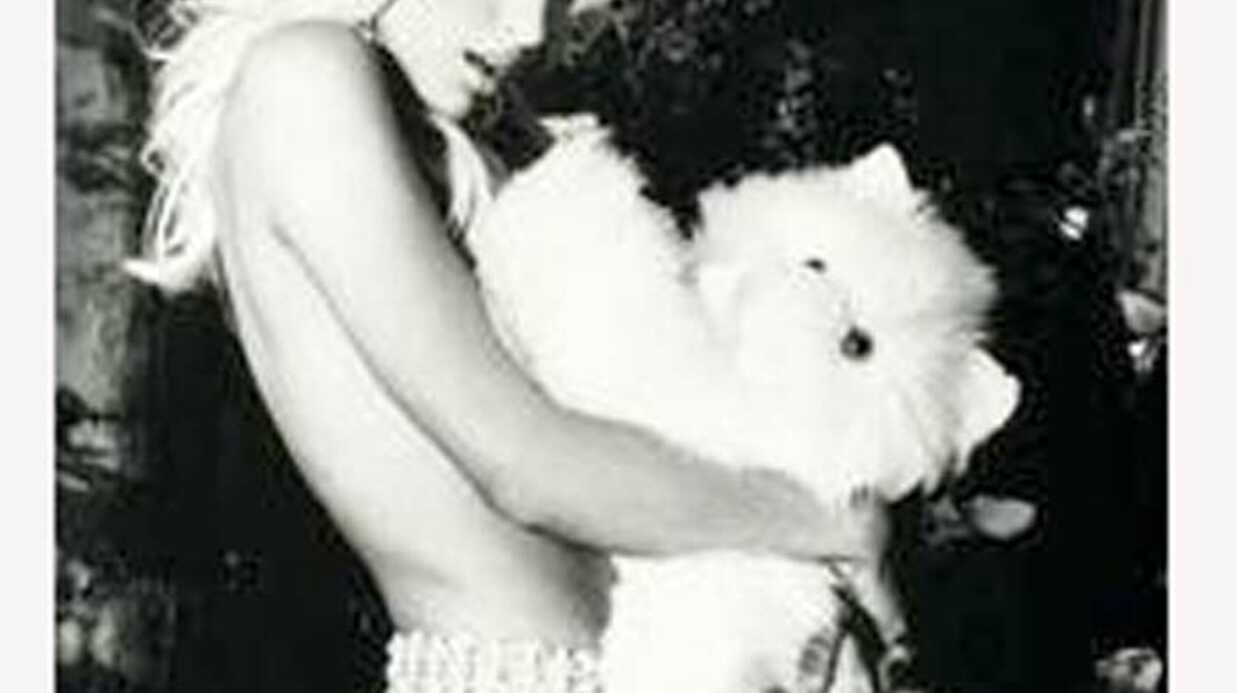 PHOTOS Paris Hilton pour la campagne Guess