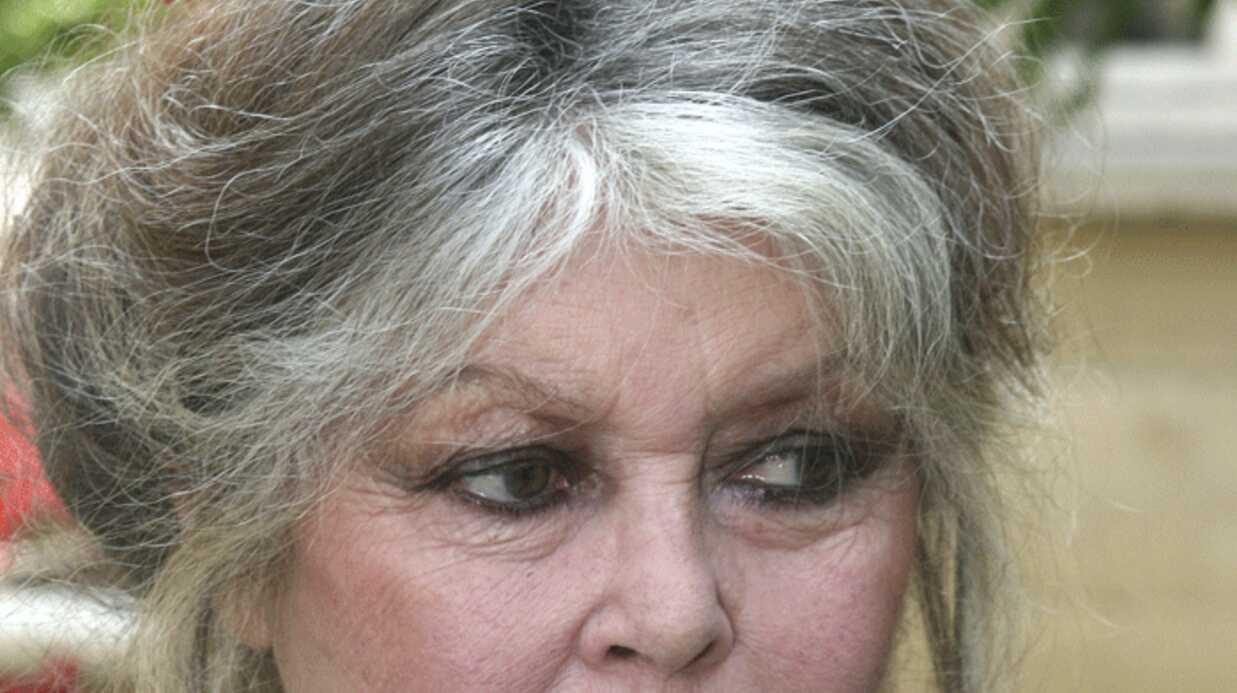 Brigitte Bardot insulte le ministre de l'agriculture