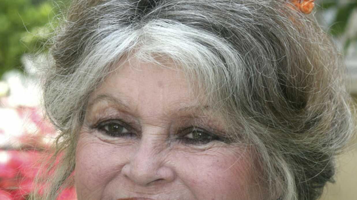 Brigitte Bardot candidate à la Présidentielle en 2012?