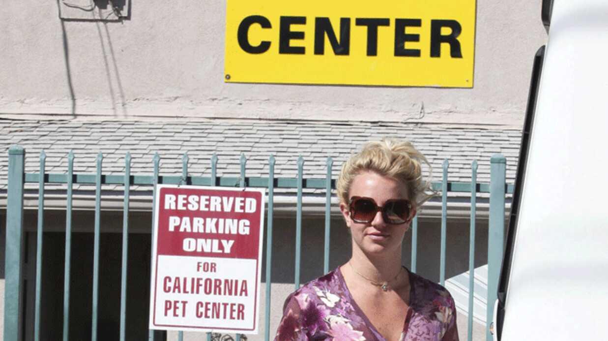 Britney Spears achète un couple de perroquets à Los Angeles