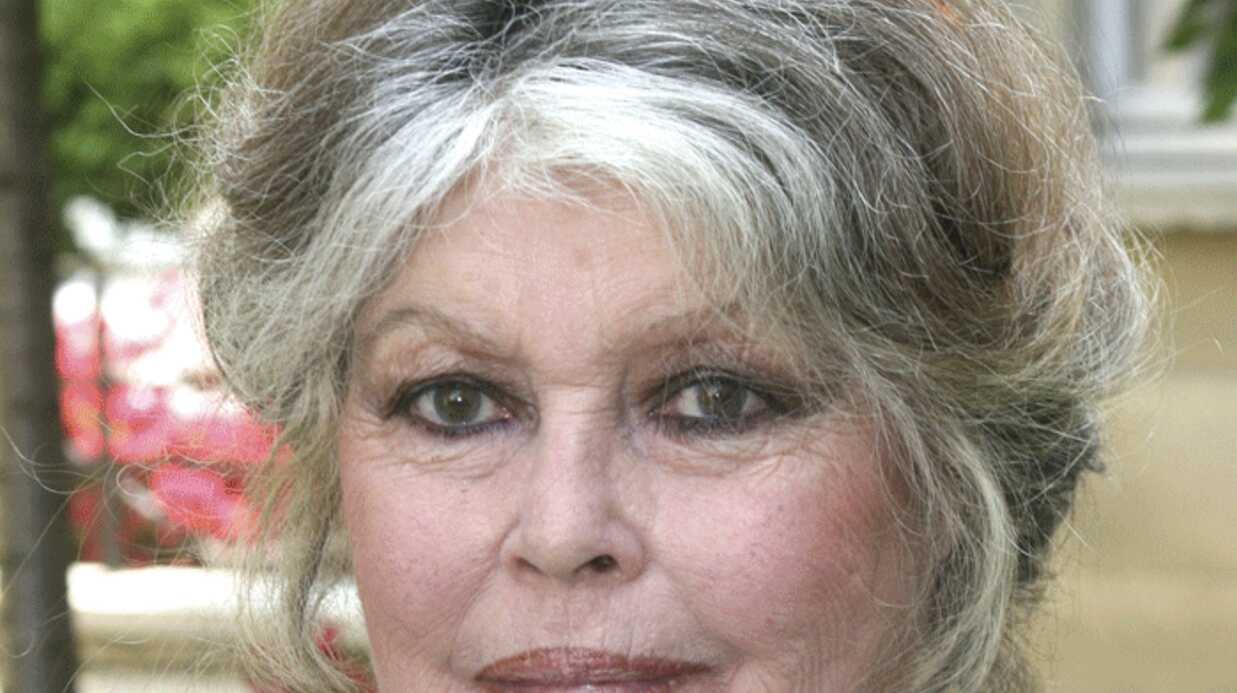 Brigitte Bardot supplie Carla Bruni de faire interdire la corrida