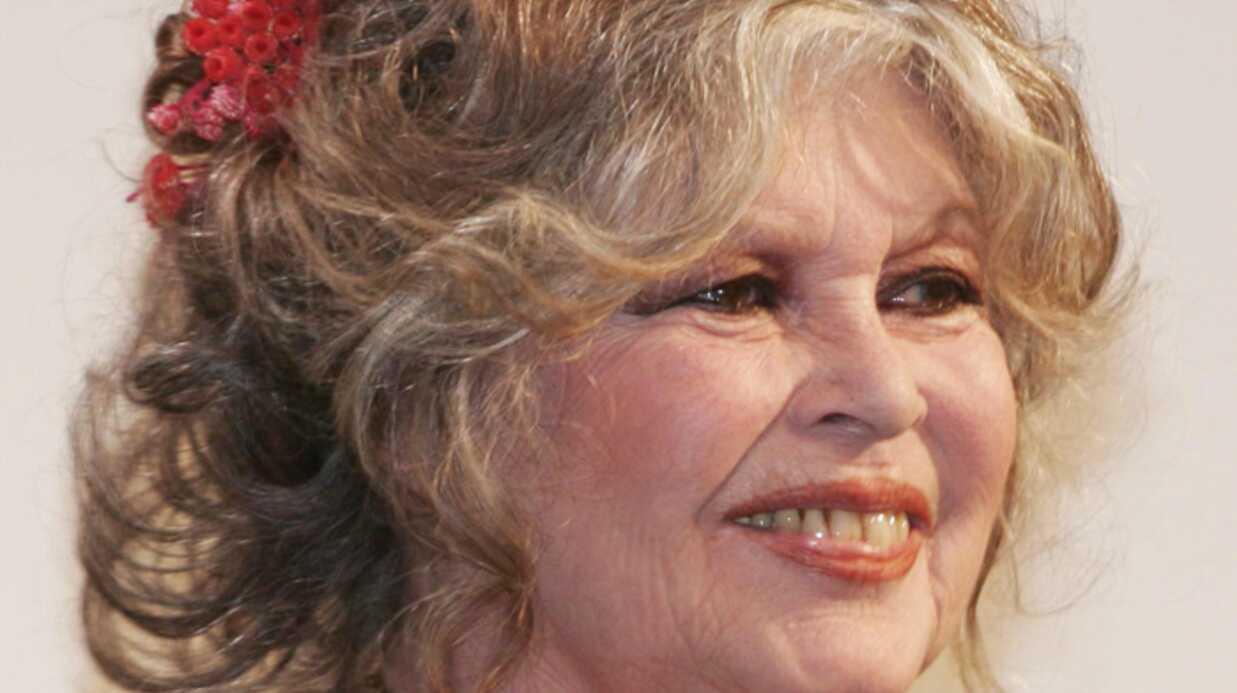 Pamela Anderson: «fille de coeur» de Brigitte Bardot