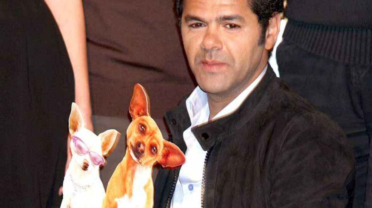 Le chihuahua de Beverly Hills:  le nouveau Disney
