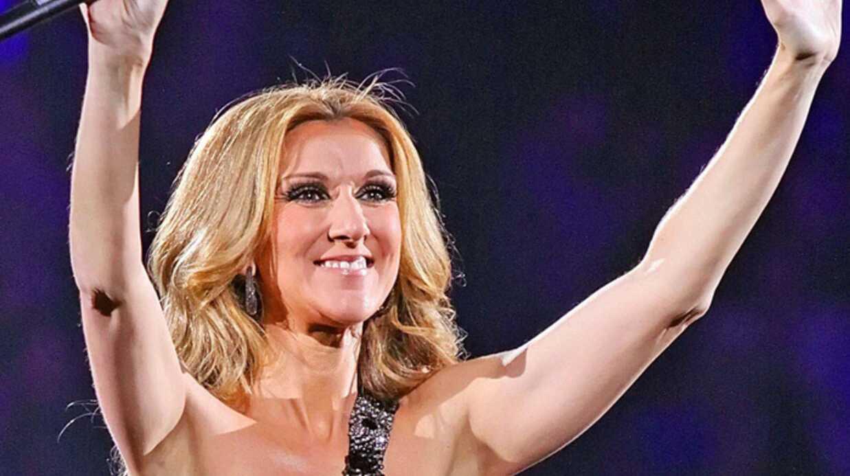 Céline Dion va s'arrêter 18 mois pour faire un second enfant