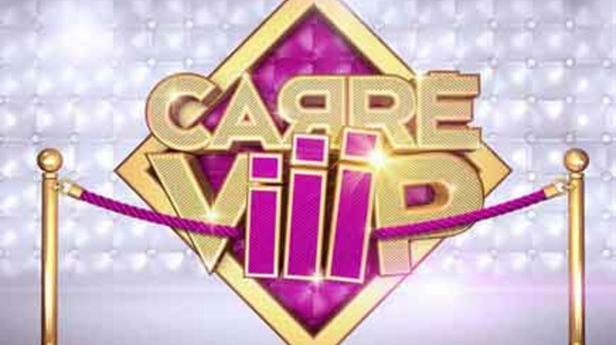 Carré Viiip: TF1 et Endemol vont devoir s'expliquer au CSA
