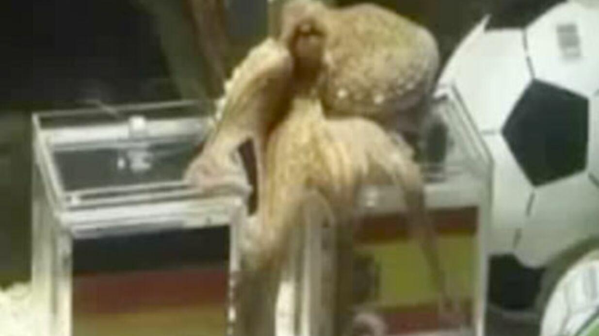 Mort de Paul le Poulpe
