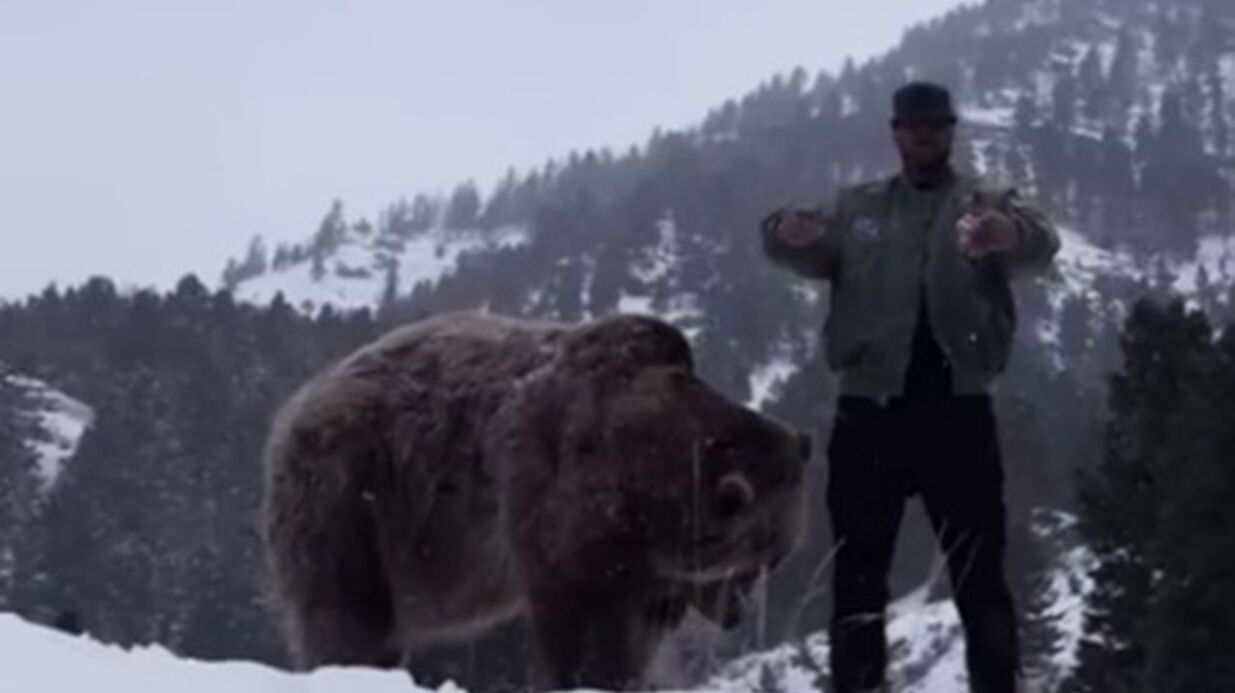 VIDEO Booba fait mieux que Leonardo DiCaprio dans The Revenant, il rappe avec un ours