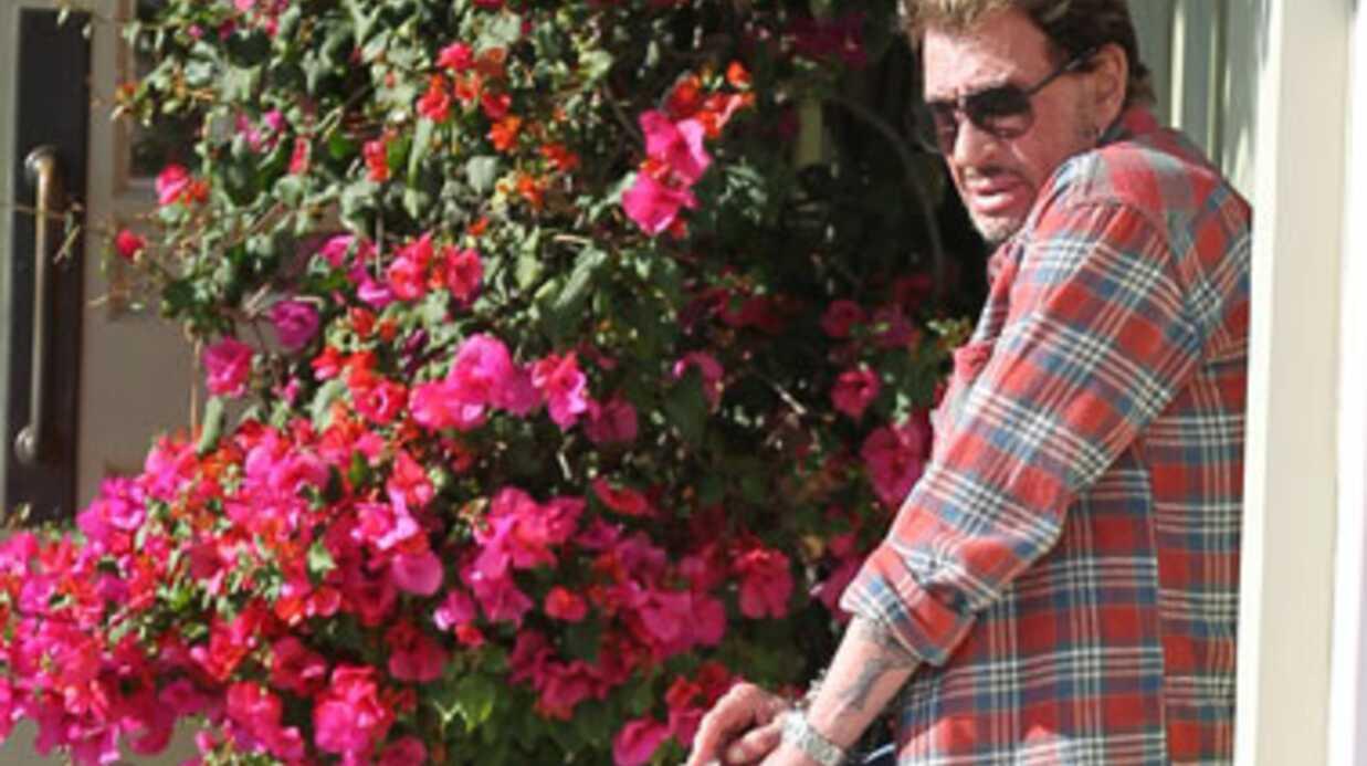 Johnny Hallyday: une guitare fétiche volée avant son concert