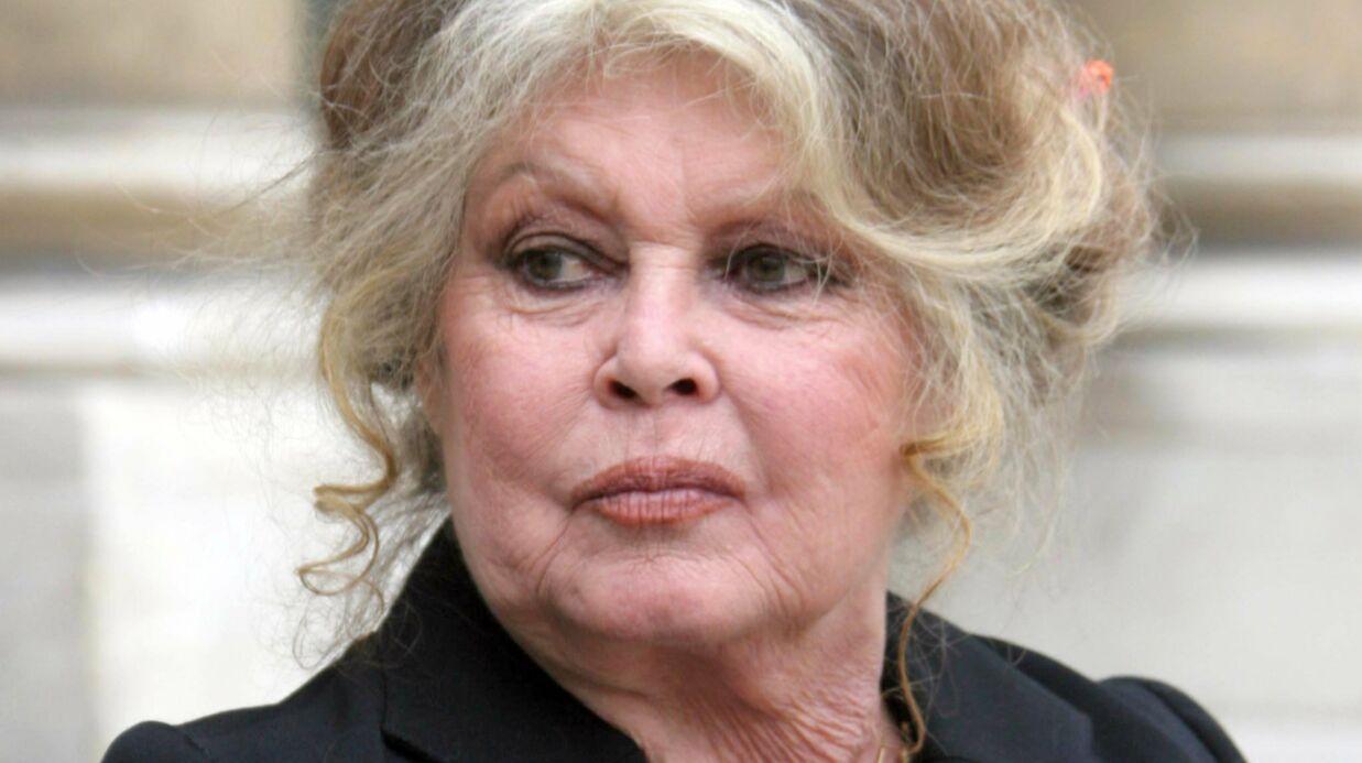 Brigitte Bardot très remontée contre un numéro d'ours sur le plateau de Patrick Sébastien