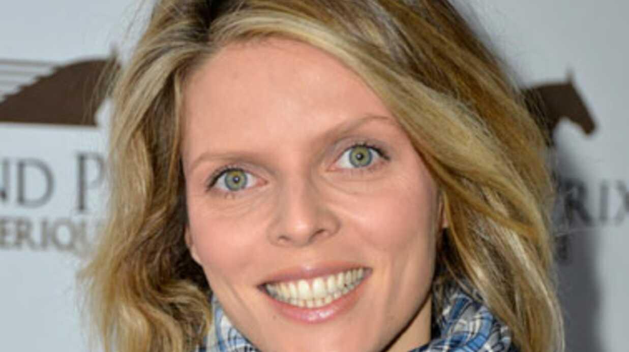 Sylvie Tellier est enceinte de son nouveau compagnon