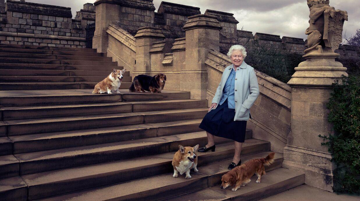 La reine Elizabeth II profondément attristée après la mort d'un de ses corgis