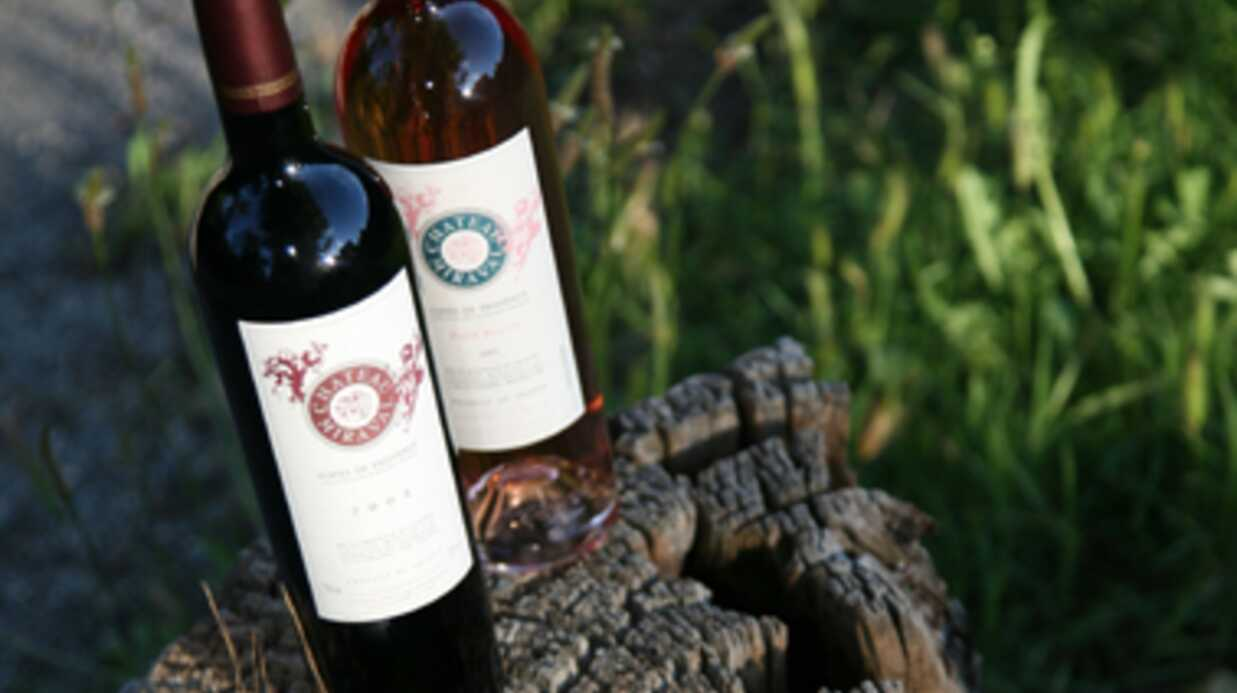 Brad Pitt et Angelina Jolie se lancent à fond dans la viticulture