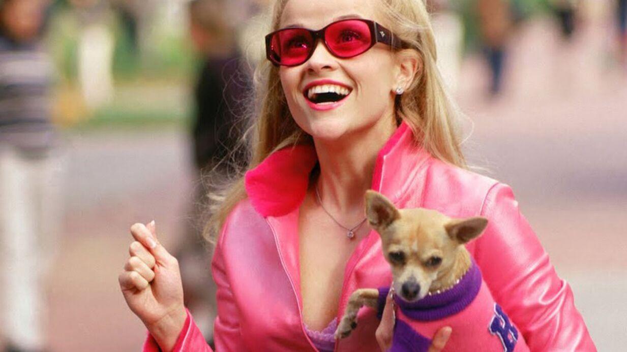 Reese Witherspoon très attristée par la mort du chihuahua de La Revanche d'une blonde