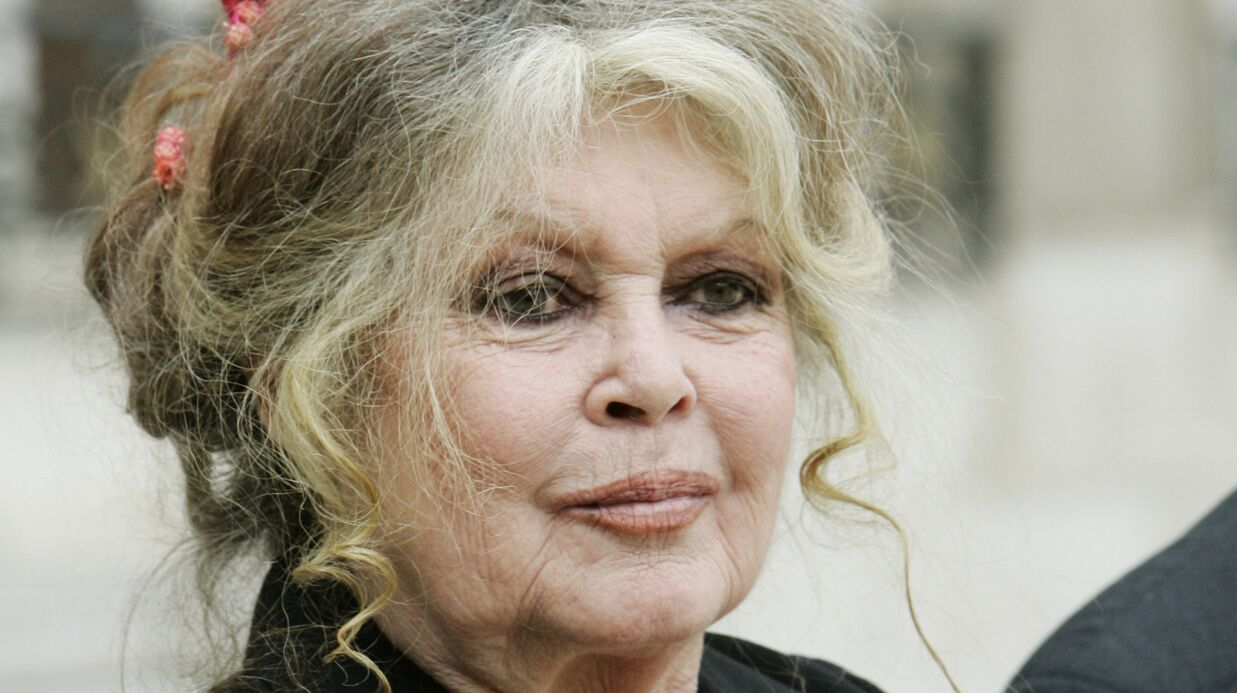 Brigitte Bardot démonte le cinéma français «plein de malades» et d'actrices «qui se font violer dans un coin»