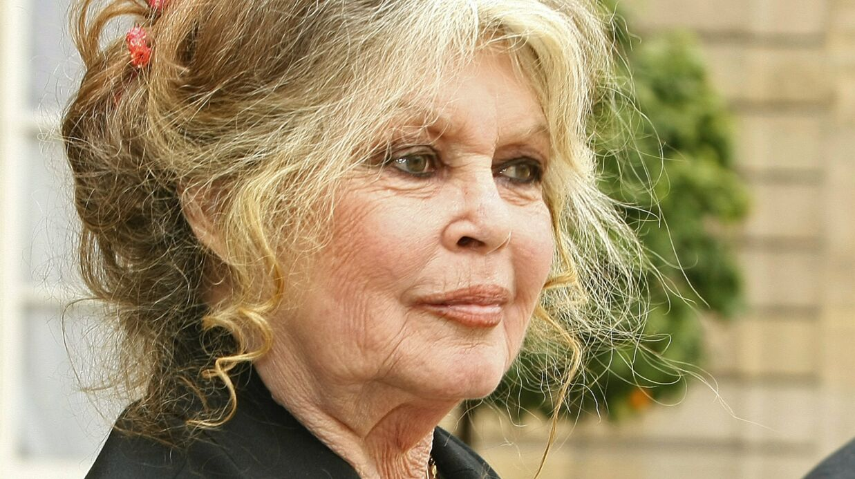 Brigitte Bardot descend Cyril Hanouna: «C'est la lie de la télé, celui-là»