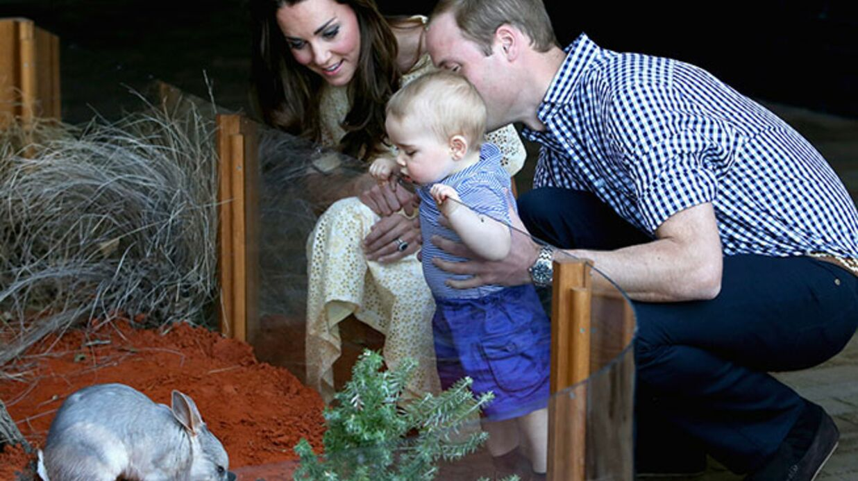 PHOTOS Le Prince William et Kate Midd­le­ton ont emmené leur petit George au zoo