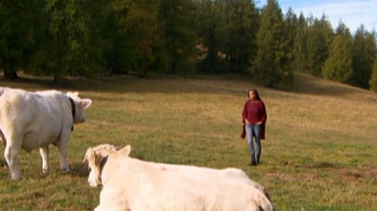 L'amour est dans le pré: une agricultrice s'estime harcelée par certains prétendants