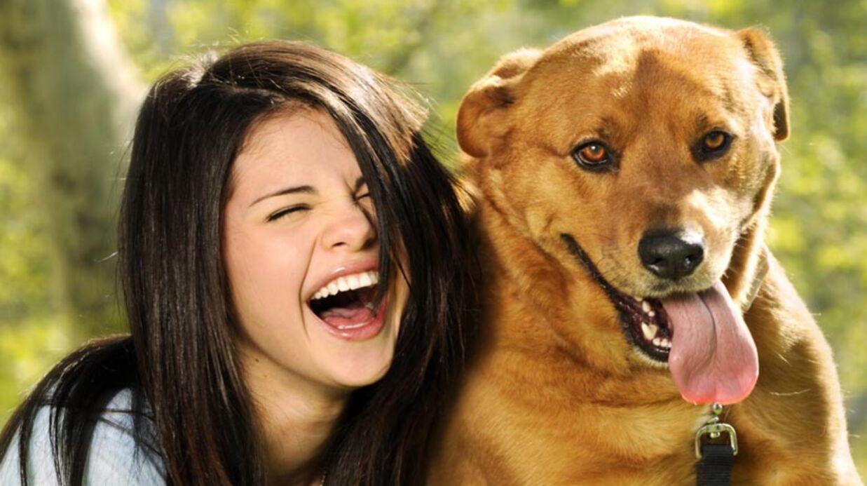Selena Gomez & Justin Bieber adoptent un chien abandonné