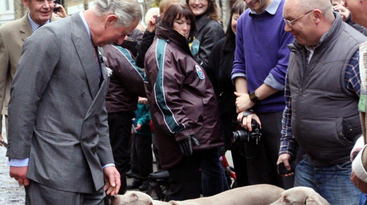 PHOTOS Le prince Charles s'éclate sur un jeu d'arcade