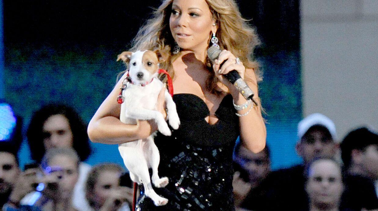 Mariah Carey a fait voyager ses chiens en première classe
