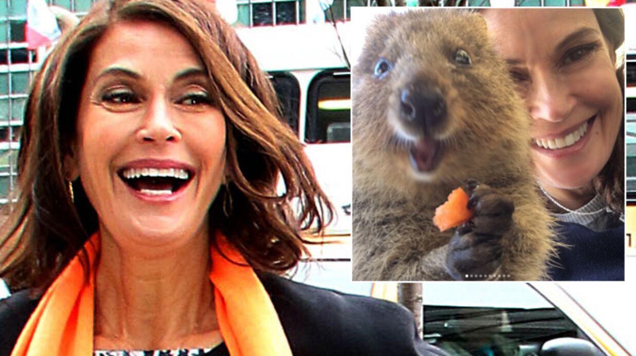 PHOTOS Teri Hatcher: sa déferlante de selfies hilarants avec un marsupial très souriant